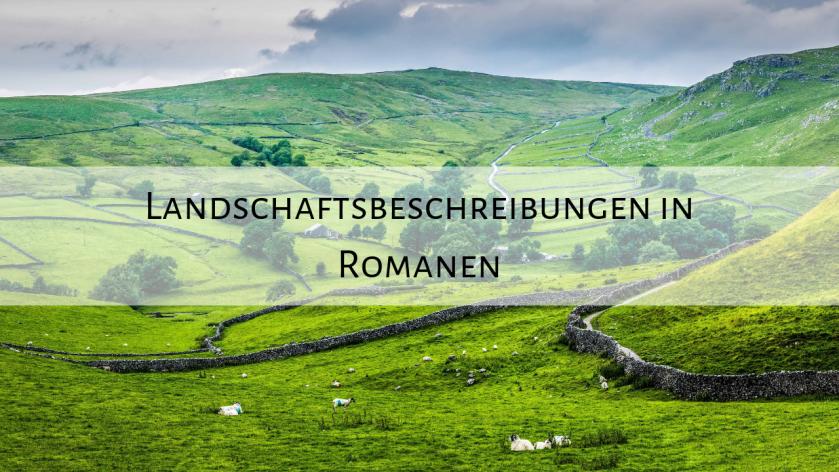 Landschaftsbeschreibungen in Romanen